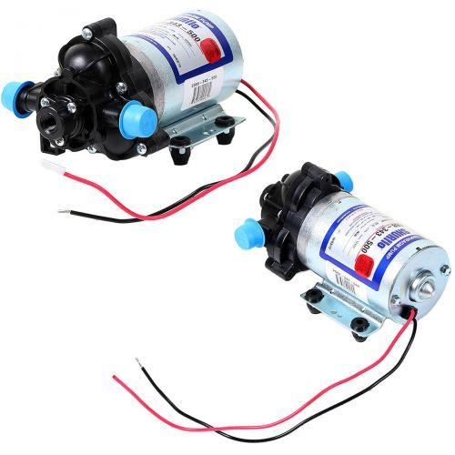 SHURflo 2088:  12 volt DC Electric Diaphragm Pump.