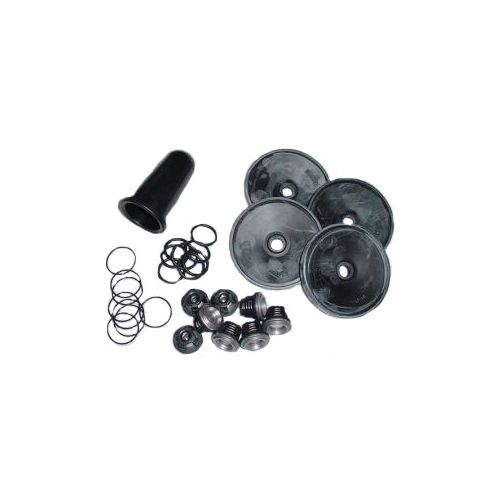 Here is the Hypro D1064 Repair Kit, includes all diaphragms and valves.