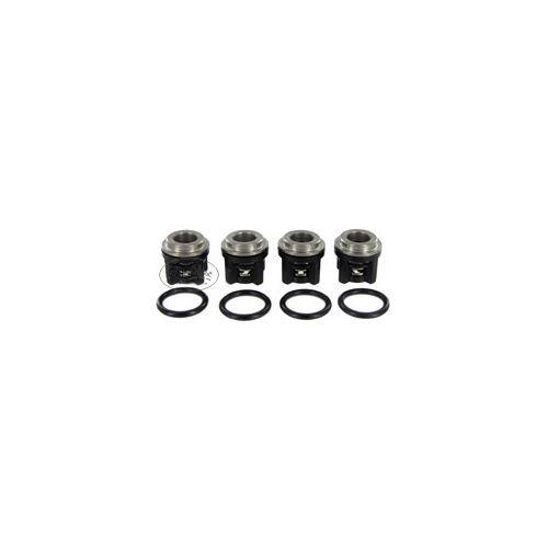 Valve Kit 3430-0506 for Hypro 2200B-P Series Duplex Plunger Pumps.