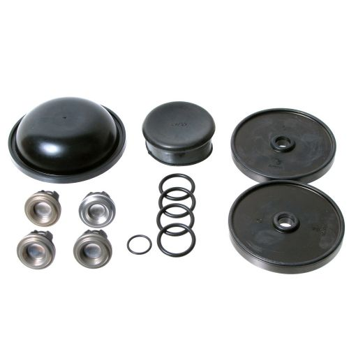 The D30 Repair Kit, comes complete with valves and valve o-rings. Includes more parts than the standard Hypro D30 Repair Kit.