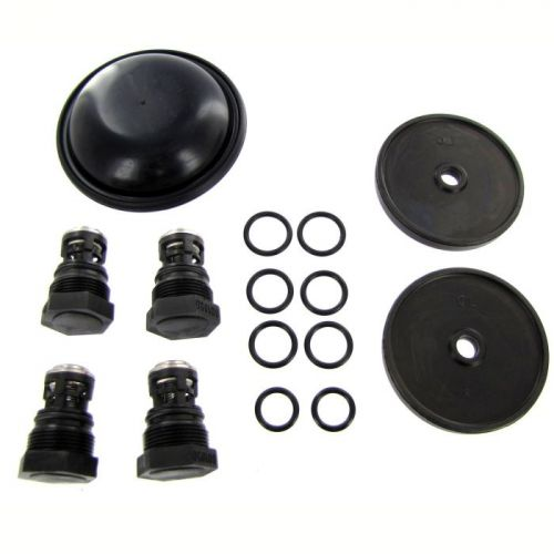 D252REPAIRKIT complete repair kit for the 9910-D252 Pump includes diaphragms, valves, and o-rings.